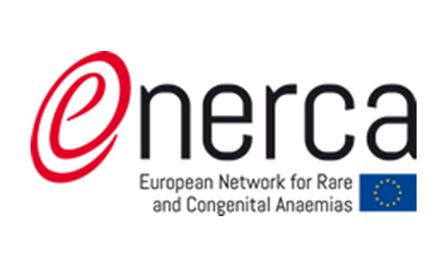 Photo of European Network for Rare Anaemias