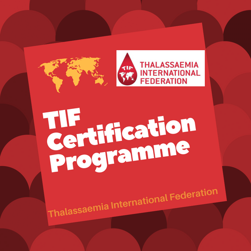 Photo of TIF Certification Programme