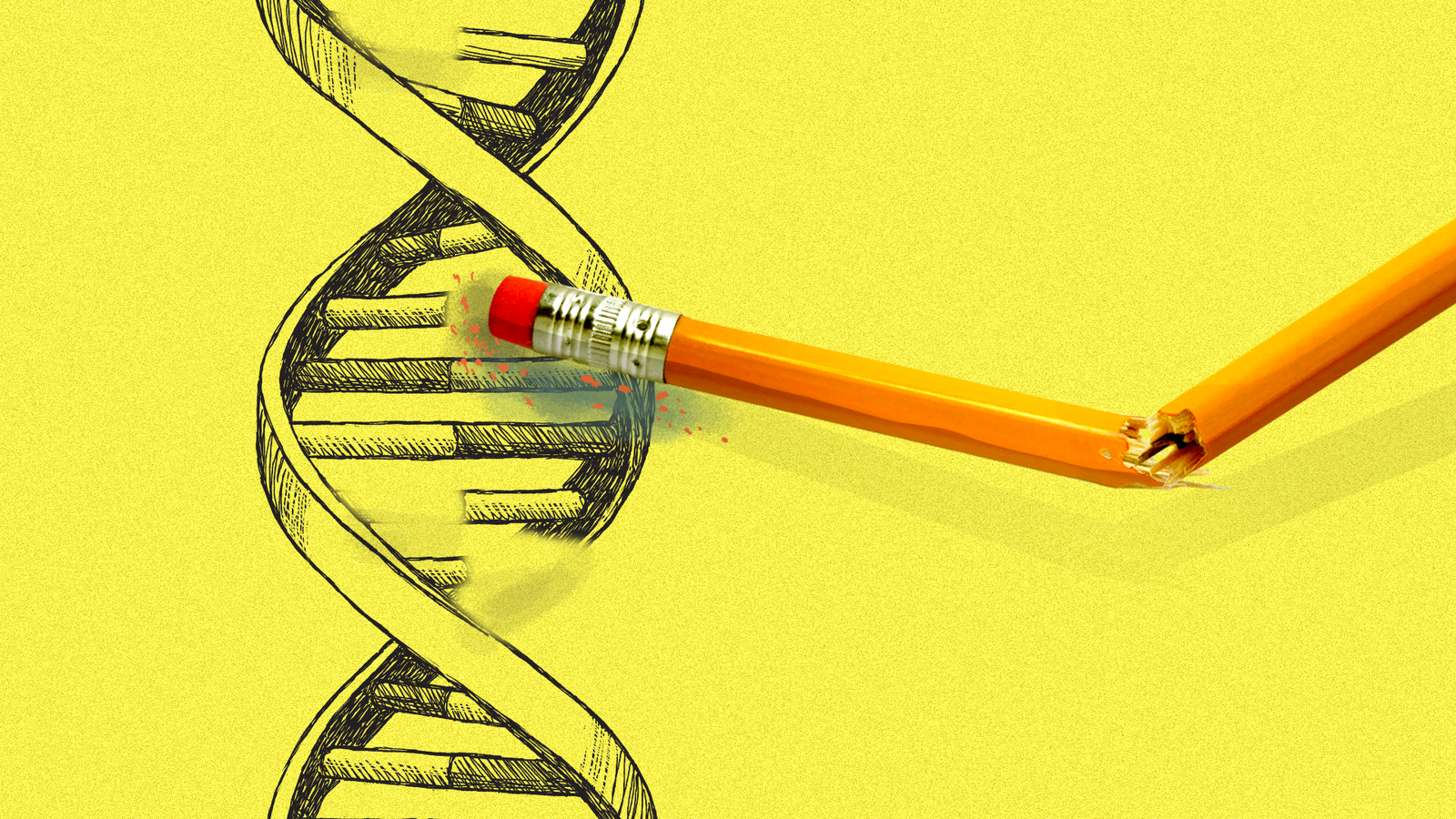 صورة New CRISPR editing tool could potentially fix 89% of genetic variations in human diseases