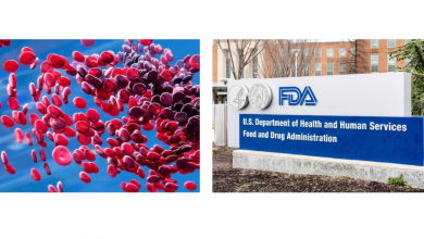 صورة IMR-687 Receives FDA Fast Track & Rare Pediatric Disease Designations for the Treatment of β-Τhalassaemia